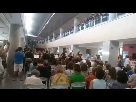 Novena Sinfonía Hospital Doce Octubre - Coro Jóvenes Madrid