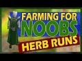 [OSRS] How To Start Doing Herb Runs | Farming For Noobs