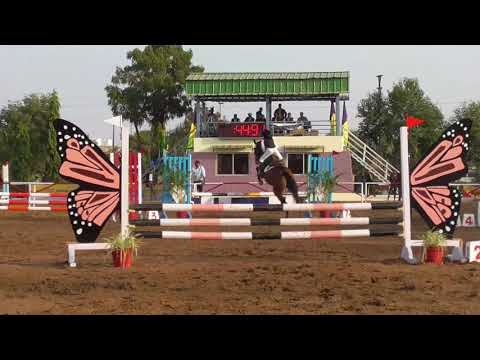 Junior National Equestrian Championship and madhya bharat equestrian championship-2017 Bhopal