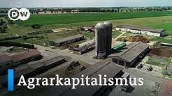 Trend zur Riesenfarm - Agrarfonds kaufen auf | Made in Germany