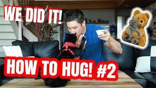 TEACH YOUR CAT HOW TO HUG #2