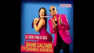 Llora, Llora- David Calzado & Su Charanga Habanera ( Con letra )
