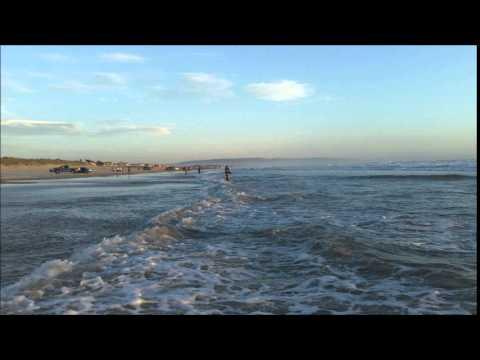 pismo surf report