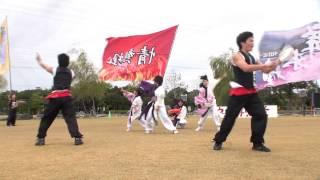 2012/11/11碧南市で開催された、第6回碧南よさこい やってみ...