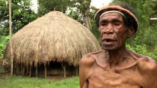 Papouasie: Le pouvoir des femmes