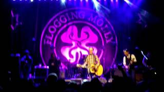 Flogging Molly - Every Dog Has Its Day