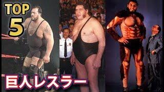 歴代プロレスラー高身長ランキングTOP5!人間山脈と呼ばれた大巨人よりも大きいレスラーなど!