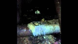 В подвале дома по улице Чапаева в Черногорске протекает канализация