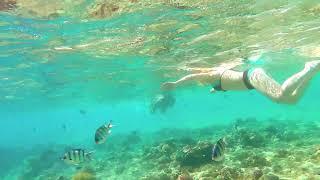 видео Lotus Bay - spa бассейн