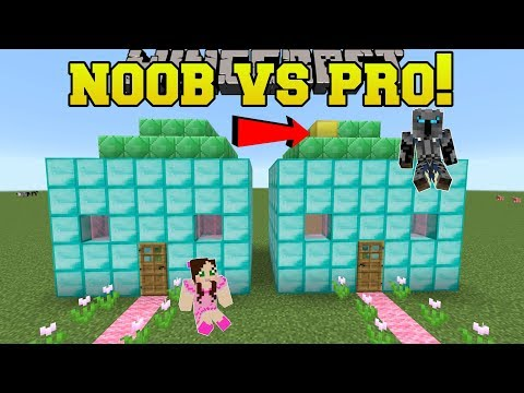 Minecraft: NOOB VS PRO!!! - SPOT THE DIFFERENCE!! - Mini-Game