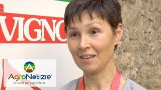 Cerasicoltura: le novità all'Ics di Vignola