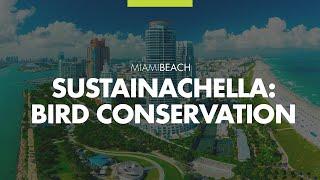 Sustainachella Soarin' with Bird Conservation