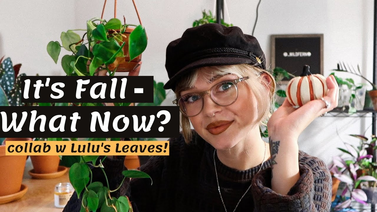 Download ☔️ Winter Plant Prep/Care Tips | Collab with @Lulu's Leaves