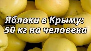 Крым: урожай яблок и винограда