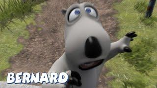 Bernard Bear | The Medallion AND MORE | 30 min Compilation | Cartoons for Children