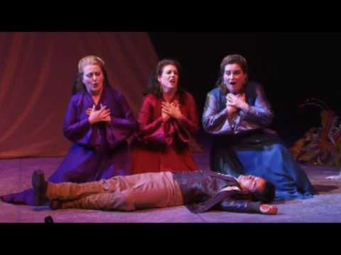The Magic Flute Opera | Bronx Live!