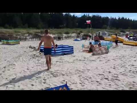 Karwia - dzik wyszedł z morza i zaatakował ludzi