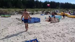 Karwia - dzik wyszedł z morza i zaatakował ludzi 2017 Video