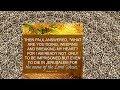 사도행전21장(쉬운성경)