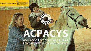 Spot Acpacys