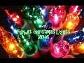 Fun At Christmas Lights 2016