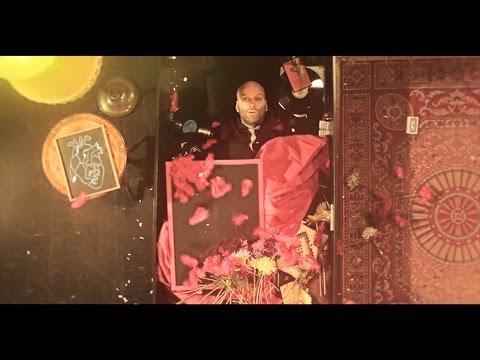 David Myhr - Veronica video