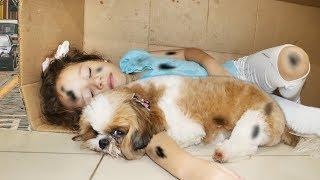 As Aventuras de Valentina e sua cachorrinha abandonada | capítulo 09