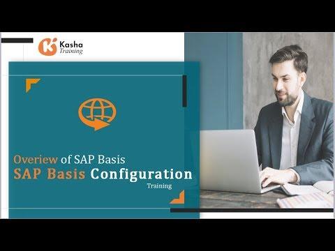 SAP Basis administrator Online Training, Courses