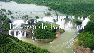 Guayana francesa, Guyana y Surinam etcs
