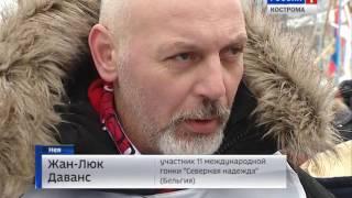 В Костромской области открылась XI Международная гонка на собачьих упряжках «Северная Надежда»
