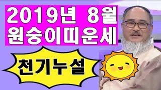 2019년 8월 원숭이띠운세/잔나비띠 8월운세/천기누설or비책??