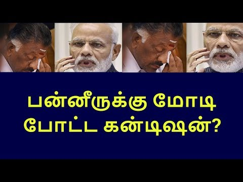 pm narendra modis answer to ops|tamilnadu political news|live news tamil