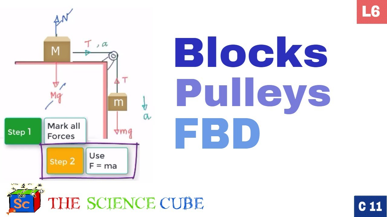 how to draw a free body diagram of a pulley