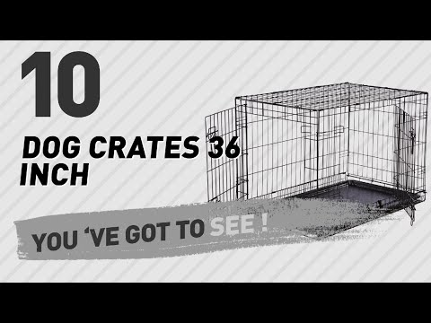 dog-crates-36-inch-//-top-10-most-popular