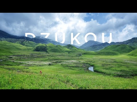 Dzukou Valley Trip | Exploring the Valley | Day 2 - Shot on GoPro | KorouTours