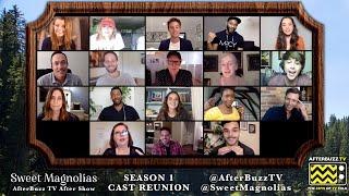 Sweet Magnolias Season 1 Cast Reunion   AfterBuzz TV