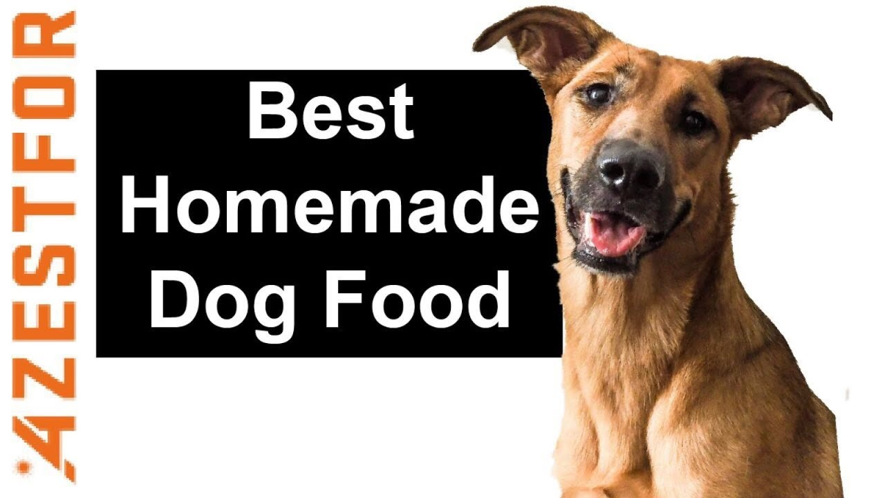 Best homemade dog food chicken potatoes youtube best homemade dog food chicken potatoes forumfinder
