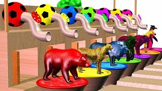 Learn Colors With Wild Animals And Spraying Machine Colors - Animals Cartoon For Kidzee Rhymes