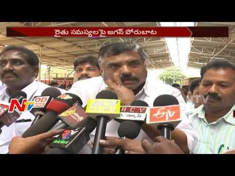 YS Jagan To Conduct Rythu Deeksha in Guntur || Mirchi Farmers Support || NTV