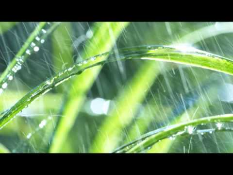 """Rain mood"" 