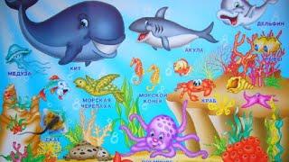 Морские обитатели английский урок