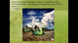 Биология- наука о живой природе.AVI