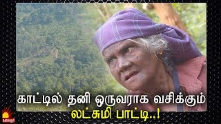 காட்டில் தனி ஒருவராக வசிக்கும் லட்சுமி பாட்டி..! Epi 114 | Kannadi | Kalaignar TV