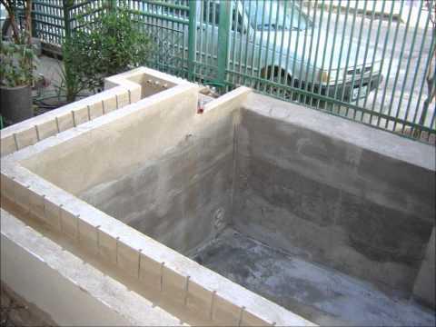 Tilapia lambaris e carpa no cativeiro caixa d agua 10 for Tanques para cachamas