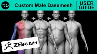 "This is a USER GUIDE for the ""Custom Male Basemesh"" created in ZBru..."