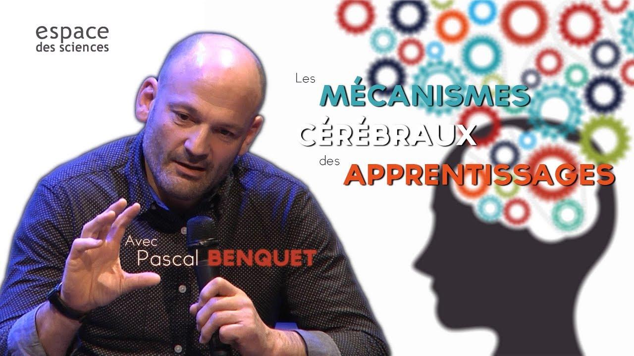 Pascal Benquet] Les mécanismes cérébraux des apprentissages - YouTube