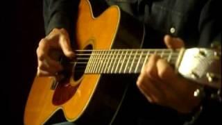 Roger Waters - Brain Damage - acoustic version