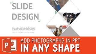Crop and add photohraphs in powerpoint slide in any shape you want | Powerpoint template tutorial