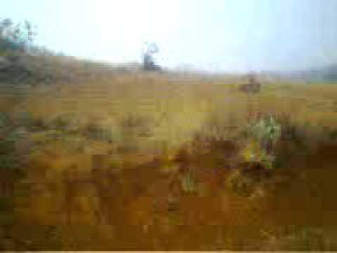 Land Plot on Sale near kolhapur