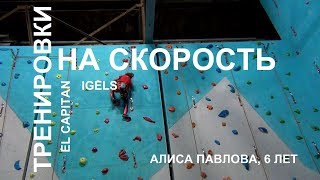 Rock climbing. Training for speed. Alisa Pavlova, 6 years old